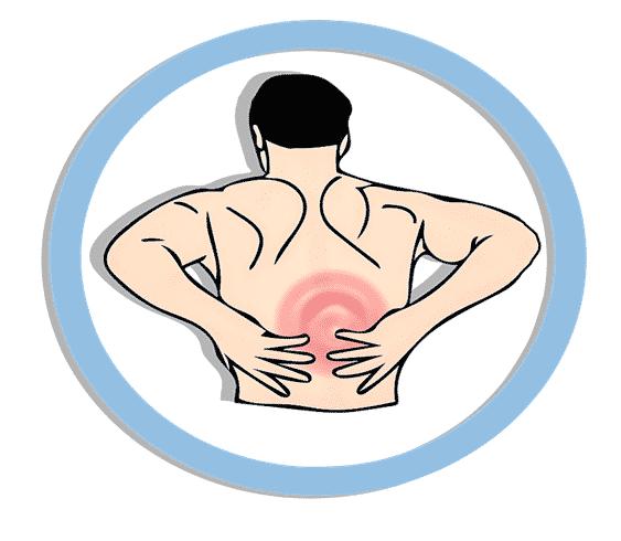 Comment utiliser les plantes médicinales pour soulager le dos ?